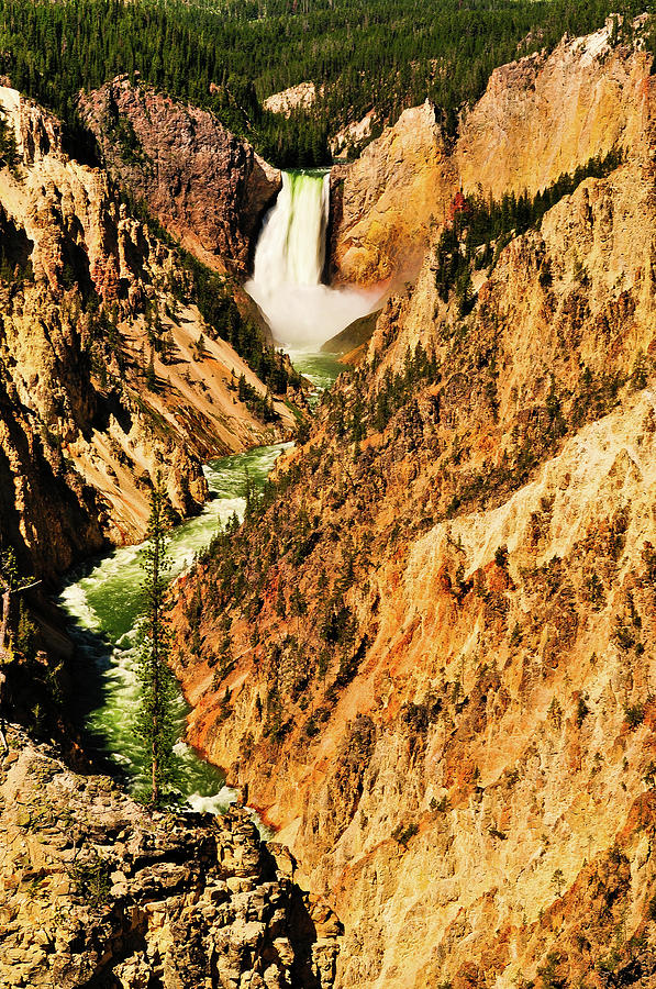 Yellowstone Artist Point View fine art nature prints