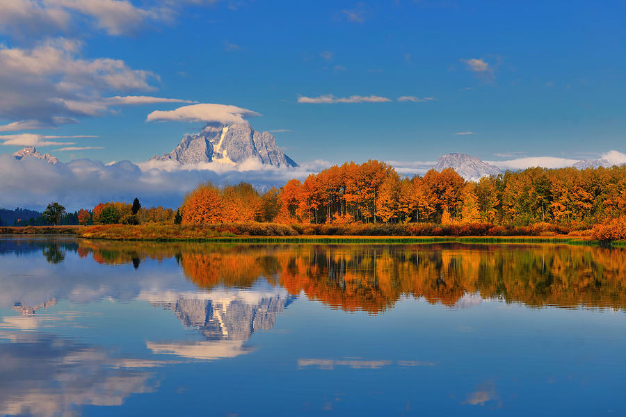Reflections with peak autumn foliage at Oxbow Bend in Grand Teton National Park