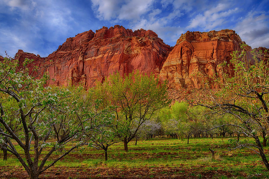 Fruita in Capitol Reef National Park fine art nature prints