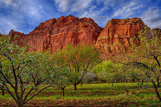 Fruita in Capitol Reef National Park fine art nature photography prints
