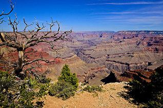 Grand Canyon South Rim Trail fine art nature prints