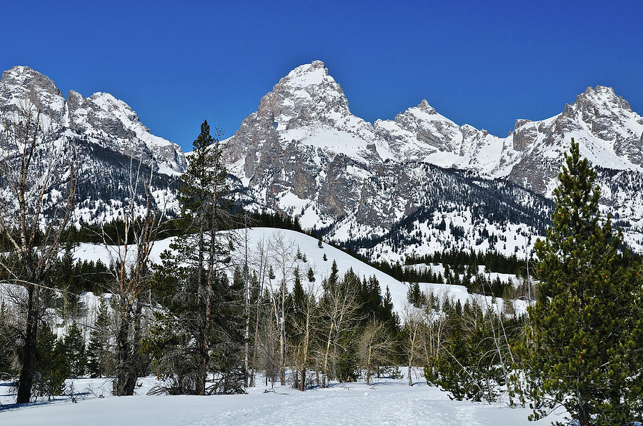 Grand Teton in Winter fine art nature prints