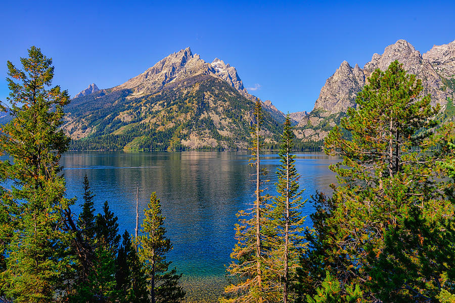 Jenny Lake Overlook fine art nature prints