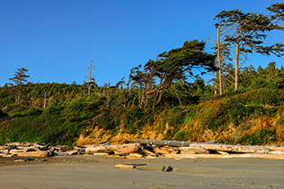 Kalaloch Beach fine art nature prints