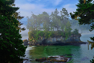Misty Seastack fine art nature prints