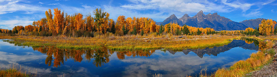 Autumn panoramic reflections at Schwabacher Landing in Grand Teton National Park