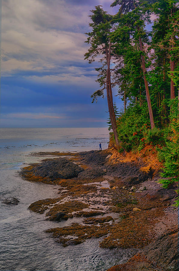 Standing by the Sea fine art nature prints