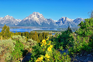 Teton Spring from Signal Mountain Summit in Grand Teton National Park fine art nature prints
