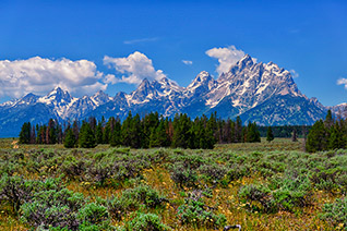 Grand Teton National Park fine art nature prints