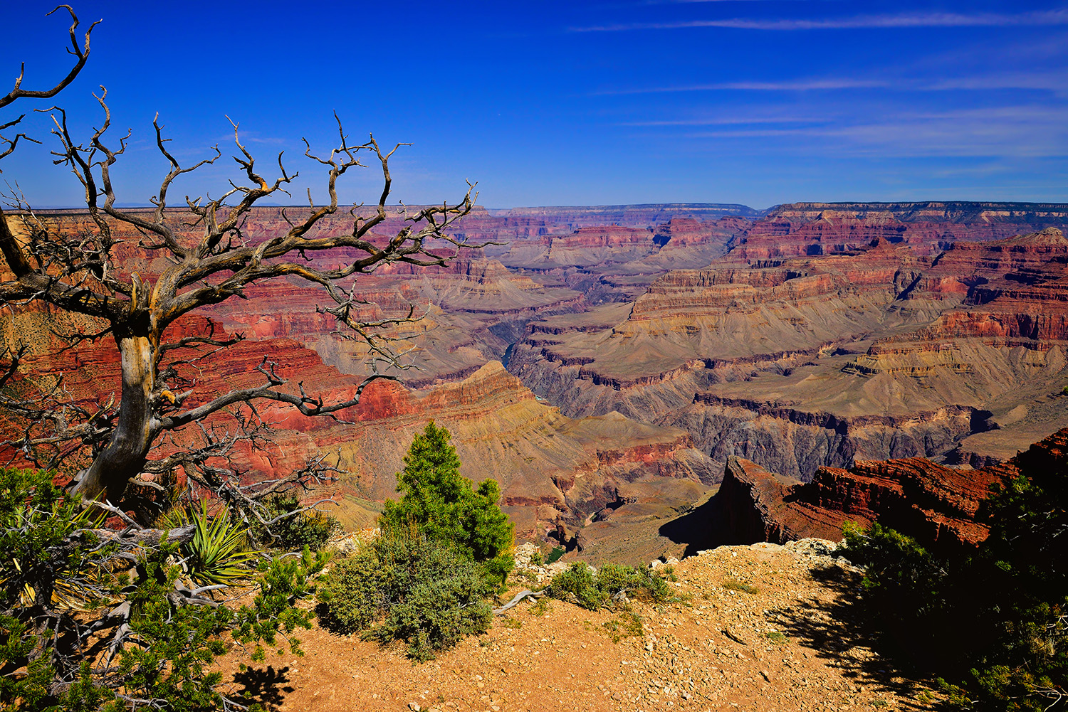 Grand Canyon South Rim Trail