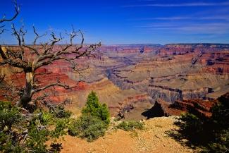 Grand Canyon South Rim Trail