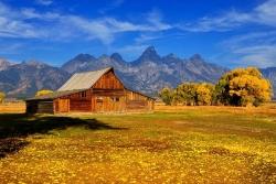 Moulton Autumn