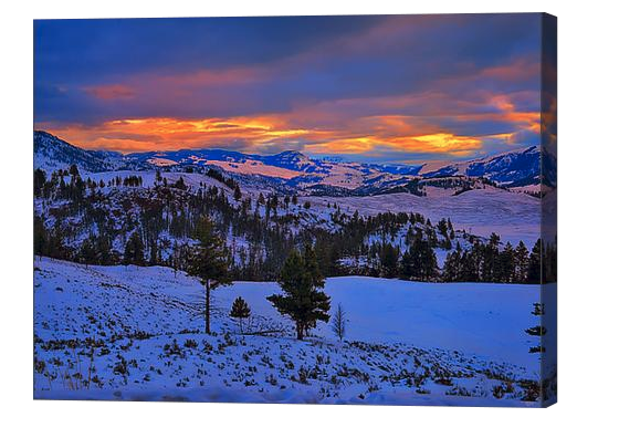 Yellowstone Winter Sunrise Canvas Print