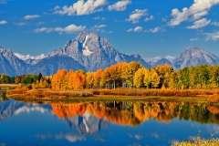 Autumn Peak at Oxbow Bend