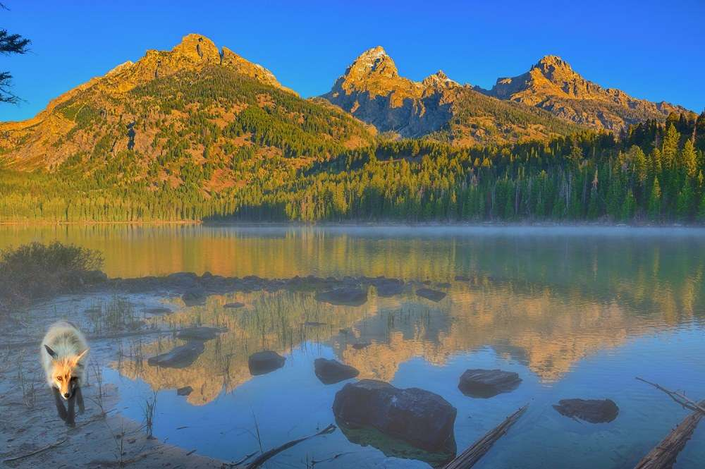 Taggart Lake Morning