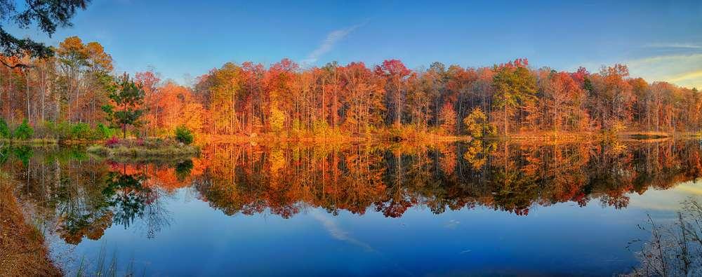 Arwood Lake Panorama