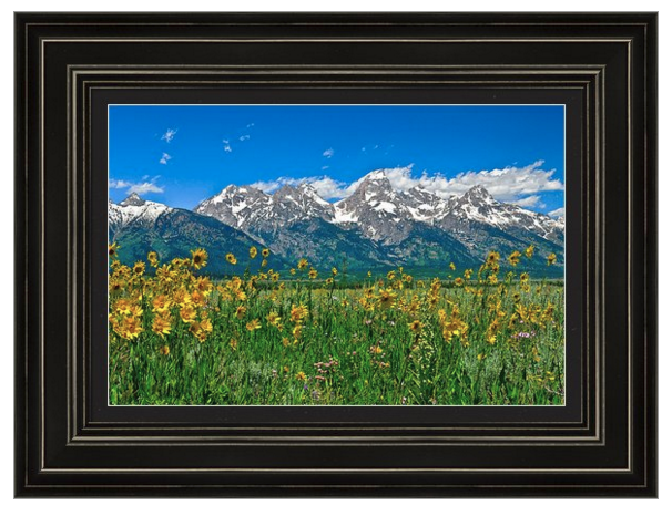 Tetons-Peaks-and-Flowers