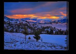 Yellowstone Winter Sunrise Canvas Print
