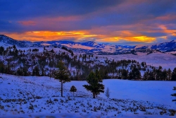 Yellowstone Winter Morning