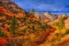 Autumn Arroyo